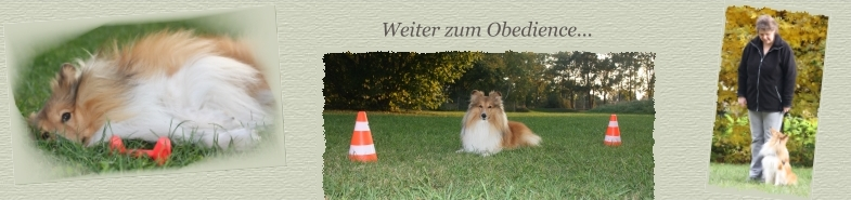 Header Obedience